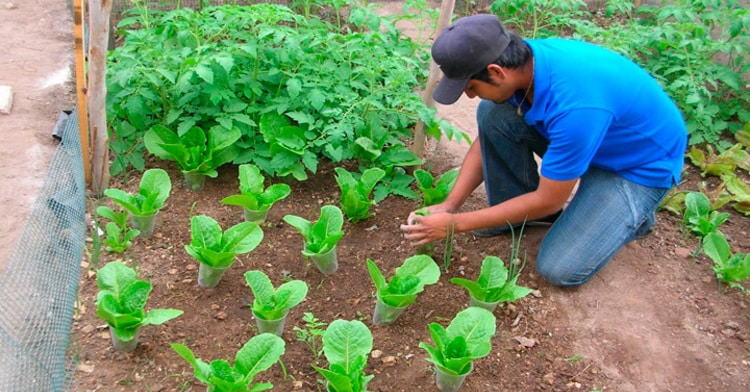 La SAGARPA apoya a pequeños productores