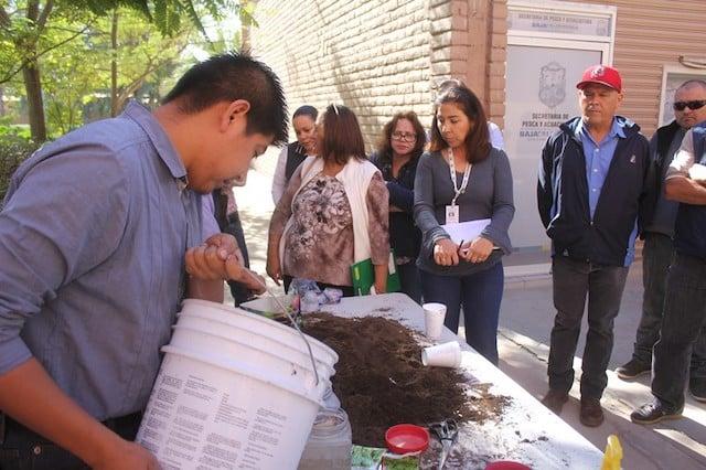Realiza Gobierno de Baja California Taller Sobre Huertos Urbanos