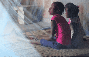 La OMS y sus asociados ponen en marcha una nueva respuesta dirigida por los países para reactivar la lucha antipalúdica