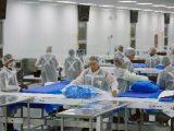 Alcanza Baja California primer lugar nacional en crecimiento de industria manufacturera