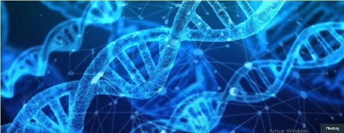WHO expert panel paves way for strong international governance on human genome editing