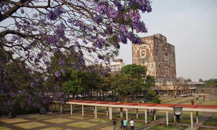 UNAM iniciará suspensión paulatina de clases el 17 de marzo