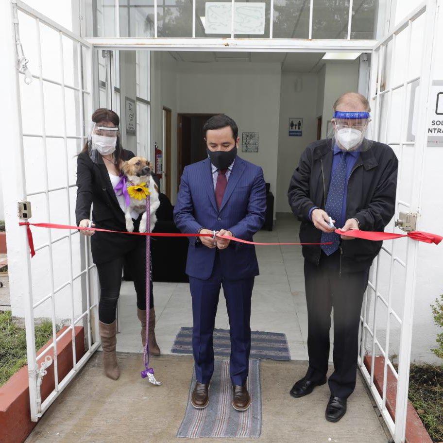 crematorio para mascotas en la CDMX